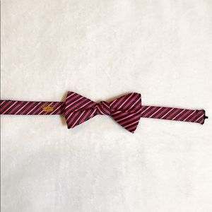 Countess Mara Adjustable Striped Silk Bow Tie